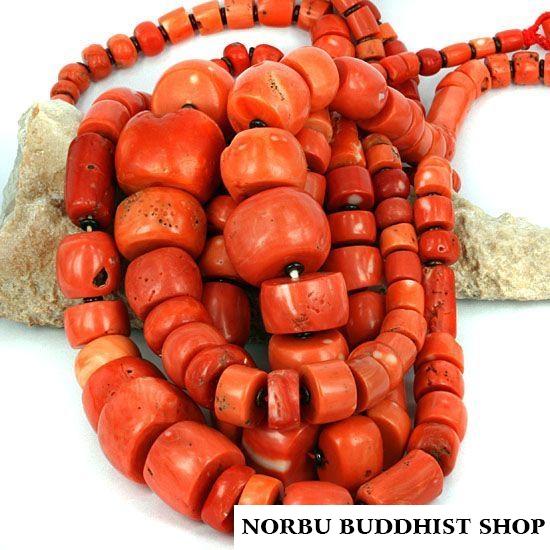 San hô đỏ hóa thạch Tây Tạng - Nepal - Himalaya đá quý đắt hơn Vàng 2