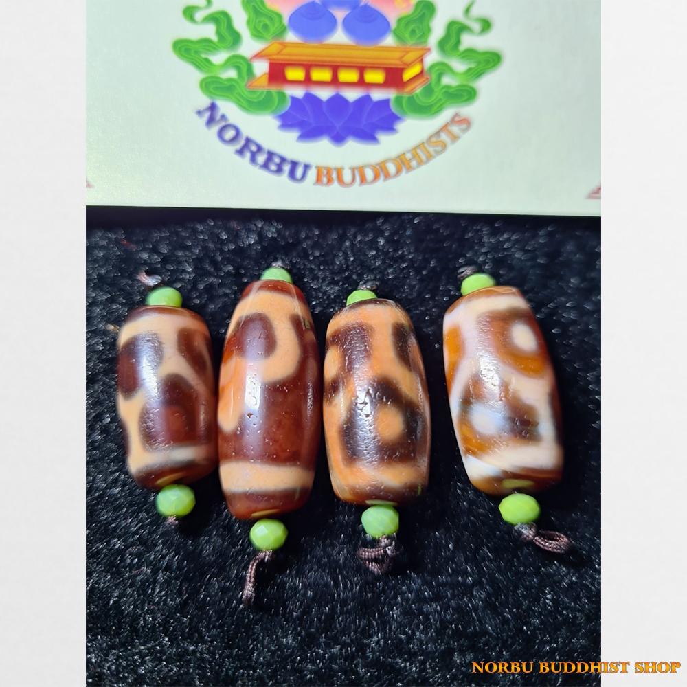 Dzi bead thiên châu mai rùa 6 chấm mai rùa và bảo bình thân ngọc cỡ ngắn
