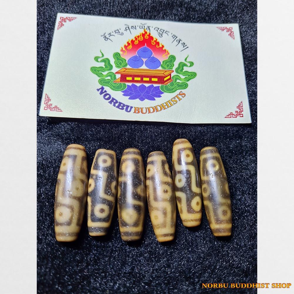 Dzi bead 9 mắt màu vàng ivory chất đẹp 6 viên tuyển chọn
