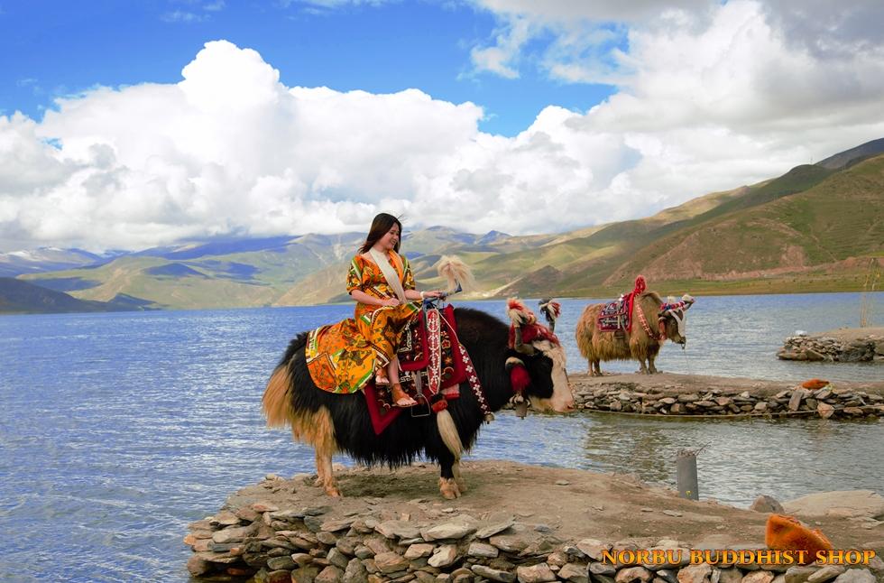 Du lịch Tây Tạng: Những điều cần lưu ý để tận hưởng chuyến đi trọn vẹn nhất 1