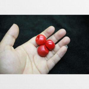 Liuli đỏ old cổ lâu đời trụ cỡ lớn bigsize từ Lhasa