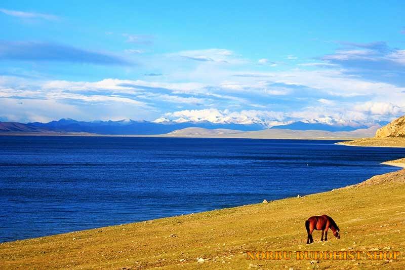 Kinh nghiệm khám phá du lịch Tây Tạng diệu kỳ của thế giới 4